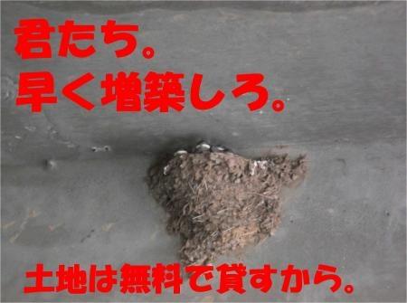 06_convert_20120525182554[1]