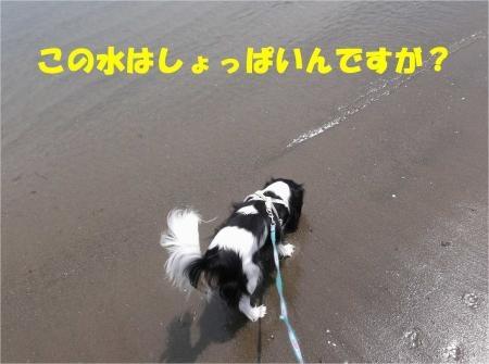 04_convert_20120526153535[1]