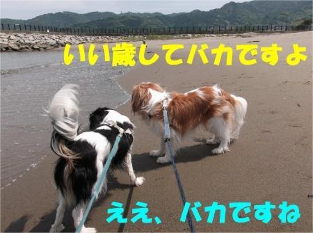05_convert_20120528173011[1]