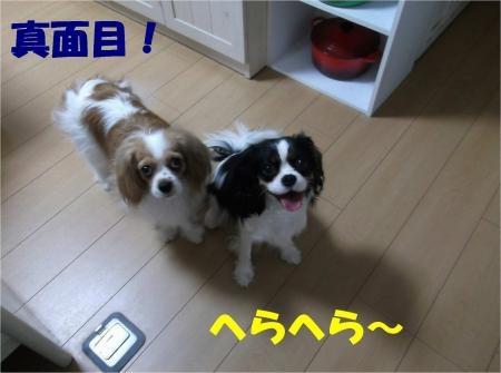 05_convert_20120529182604[1]