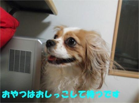 08_convert_20120530172948[1]