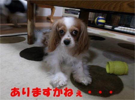 04_convert_20120601180442[1]