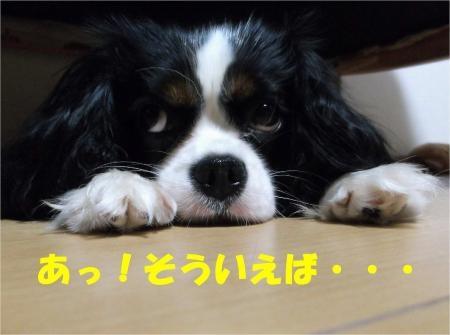 05_convert_20120601180511[1]