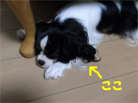07_convert_20120601180610[1]