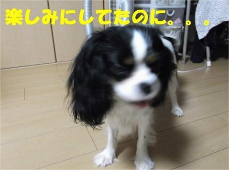 04_convert_20120604172428[1]
