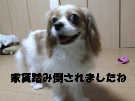 05_convert_20120604172456[1]