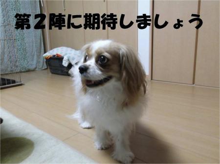 07_convert_20120604172611[1]