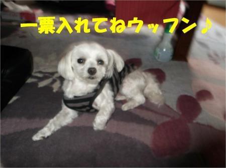 01_convert_20120606174155[1]