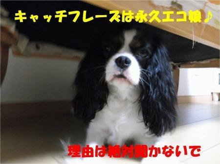02_convert_20120606174231[1]