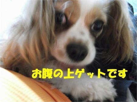 02_convert_20120607174443[1]