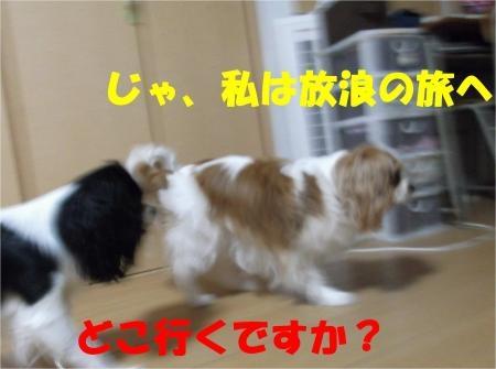 05_convert_20120607174607[1]