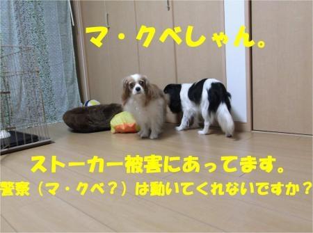 06_convert_20120607174634[1]