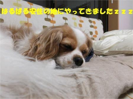 07_convert_20120607174706[1]