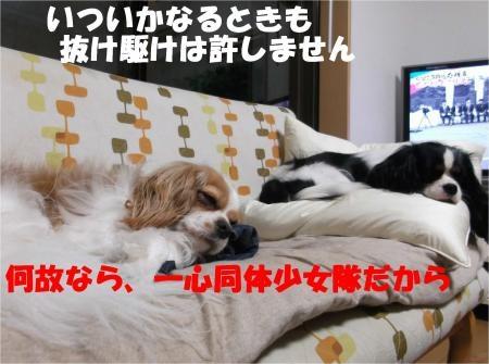 09_convert_20120607174809[1]