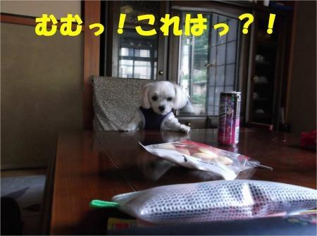 05_convert_20120608174625[1]