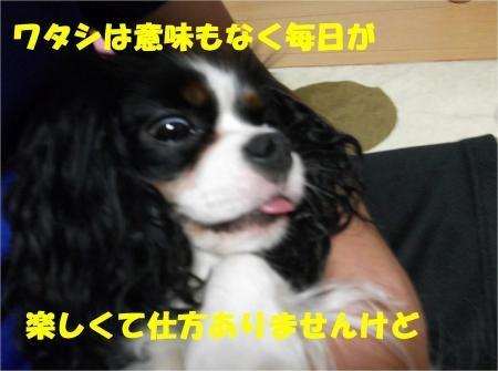 01_convert_20120612175222[1]