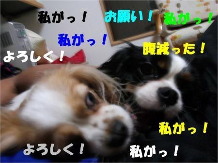 03_convert_20120612175344[1]