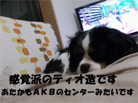 05_convert_20120612175446[1]