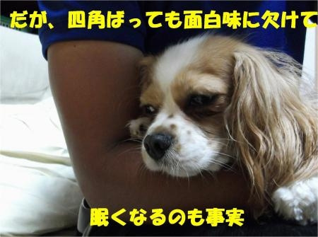 09_convert_20120612175701[1]