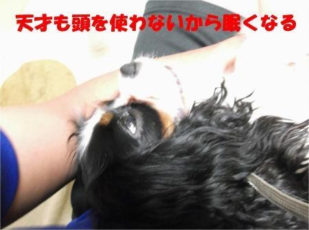 010_convert_20120612175729[1]