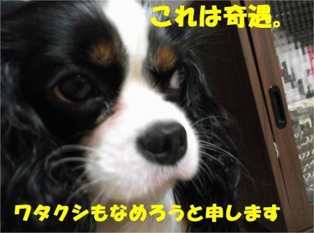 02_convert_20120613164707[1]