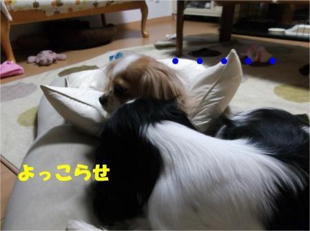 07_convert_20120613164941[1]
