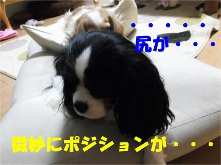 011_convert_20120613165104[1]