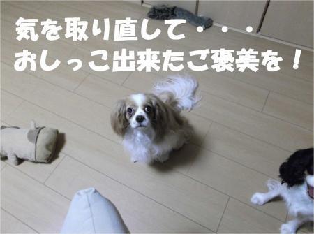 05_convert_20120614183319[1]