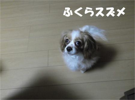 09_convert_20120614183538[1]