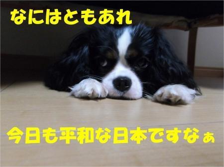 09_convert_20120615182126[1]