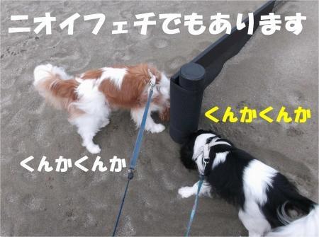02-2_convert_20120618172810[1]