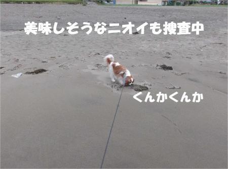 07_convert_20120618173108[1]