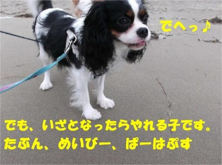 010_convert_20120618173258[1]