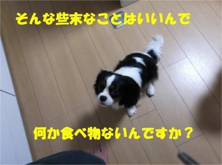 02-2_convert_20120619181346[1]