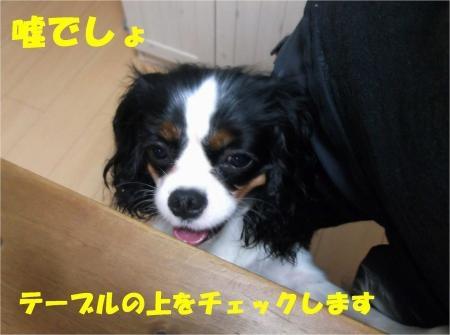 03_convert_20120619181417[1]