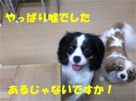 04_convert_20120619181447[1]
