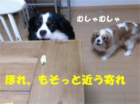 08_convert_20120619181705[1]
