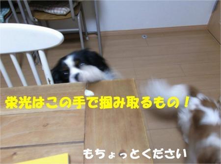 09_convert_20120619181731[1]