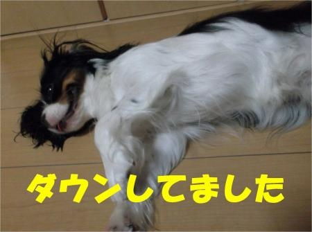 01_convert_20120625174511[1]