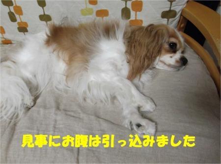 04_convert_20120625174645[1]