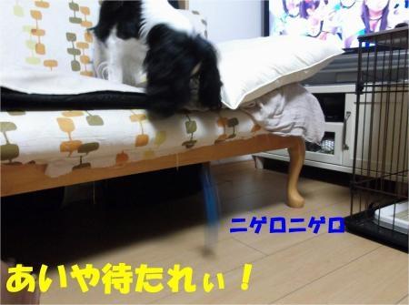 07_convert_20120626175212[1]