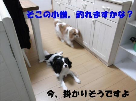 03_convert_20120627210123[1]