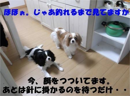 04_convert_20120627210204[1]