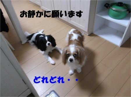 05_convert_20120627210239[1]