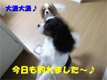 09_convert_20120627210421[1]