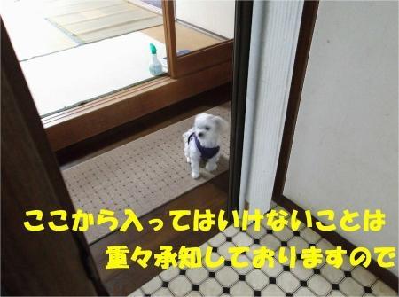 03_convert_20120628195647[1]