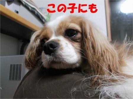 07_convert_20120628195849[1]