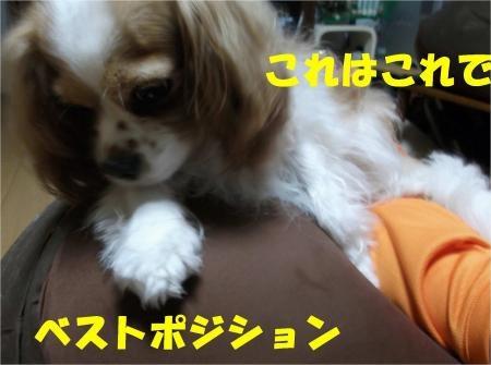 03_convert_20120629182836[1]
