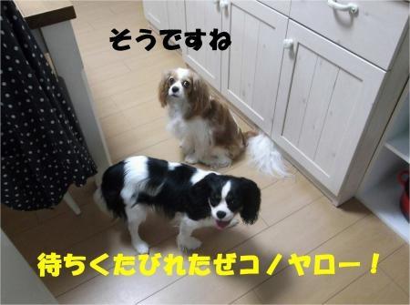 01_convert_20120702175552[1]