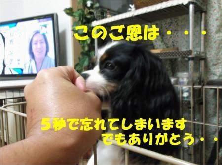 08_convert_20120702180100[1]